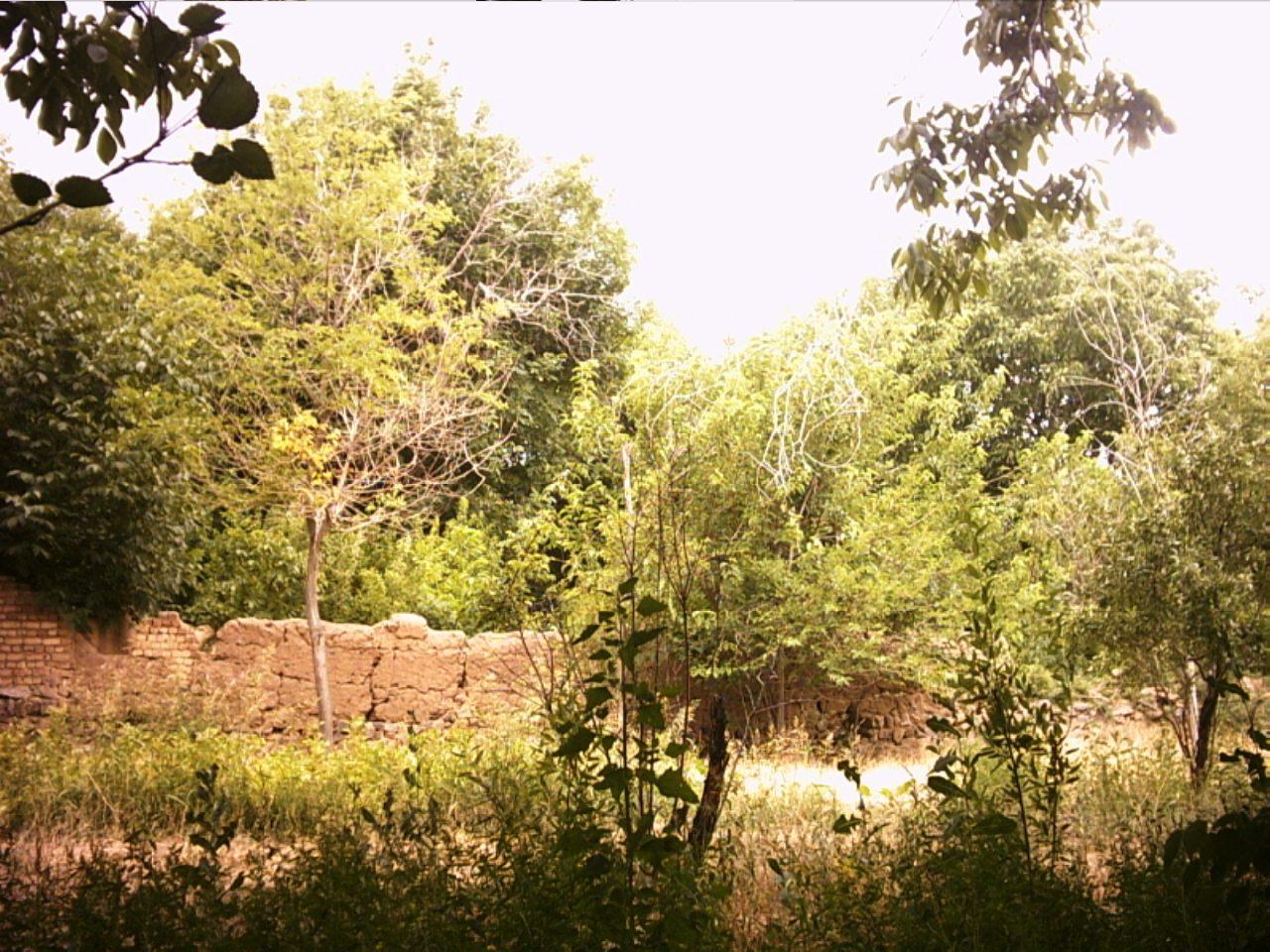 روستای قبادبزن کهک