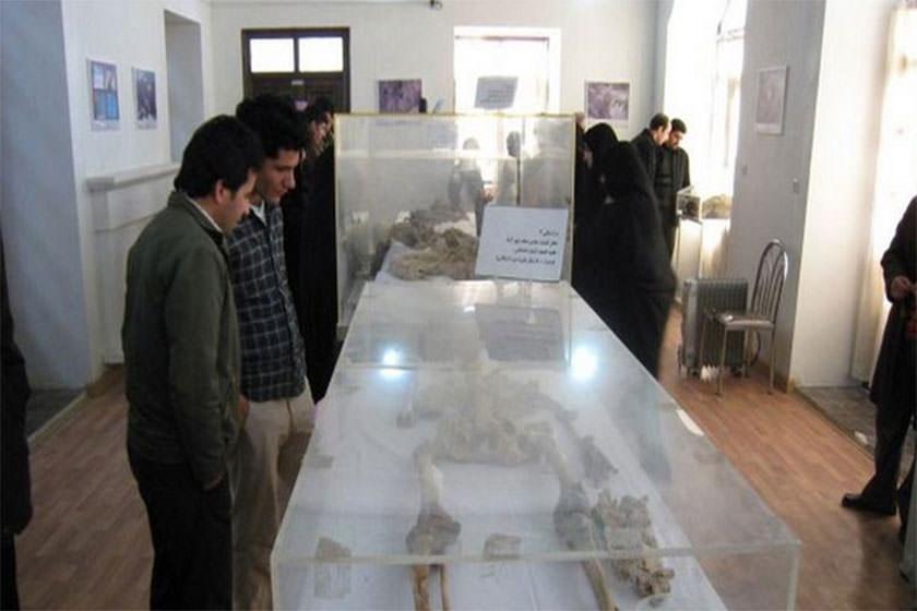 موزه باستان شناسی سلطانیه