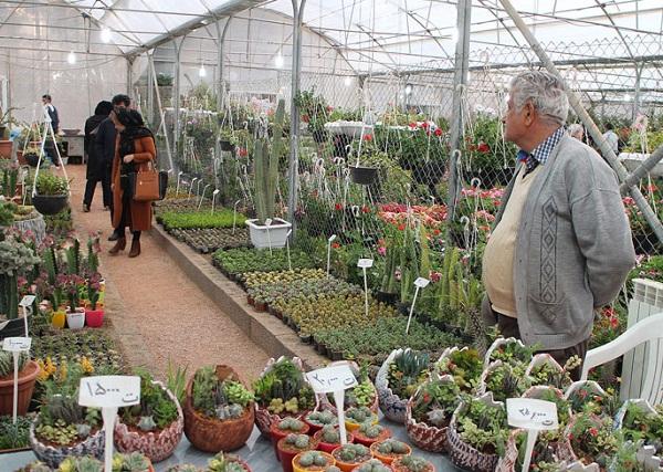 بازار گل و گیاه اصفهان