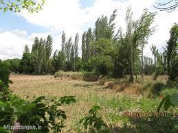 تپه ی باستانی محمود آباد خرمدره
