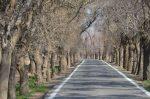 خاوه ، روستایی برای همراهی تاریخ و طبیعت در استان تهران