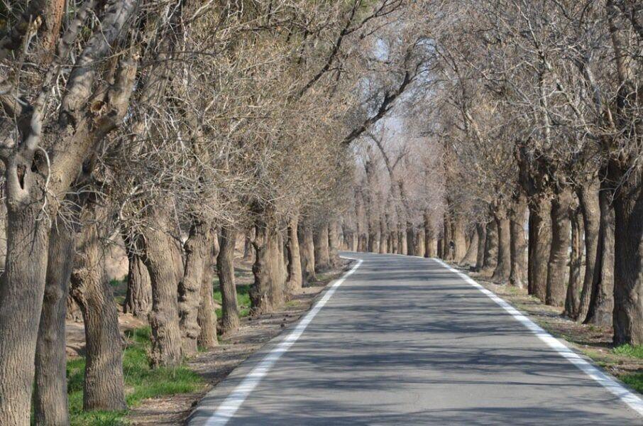 روستای خاوه