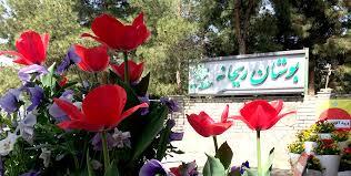 محله زعفرانیه تهران