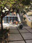 کافه هاستل کرگدن تهران