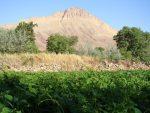 کَهَک، روستایی که با اقتصاد مقاومتی جان دوباره گرفت