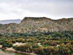 شهر انارستان