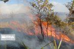 آتشسوزی در جنگلهای فارس و فرصتهای پیشگیری