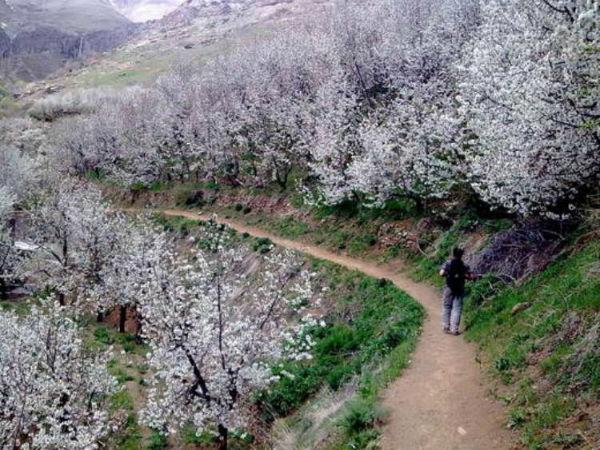 روستای سنگان