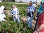 گردشگری کشاورزی یکی از راهبردهای مهم برای توسعه روستایی