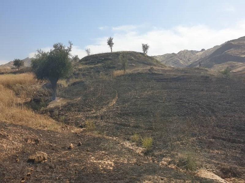 شهر سرداران