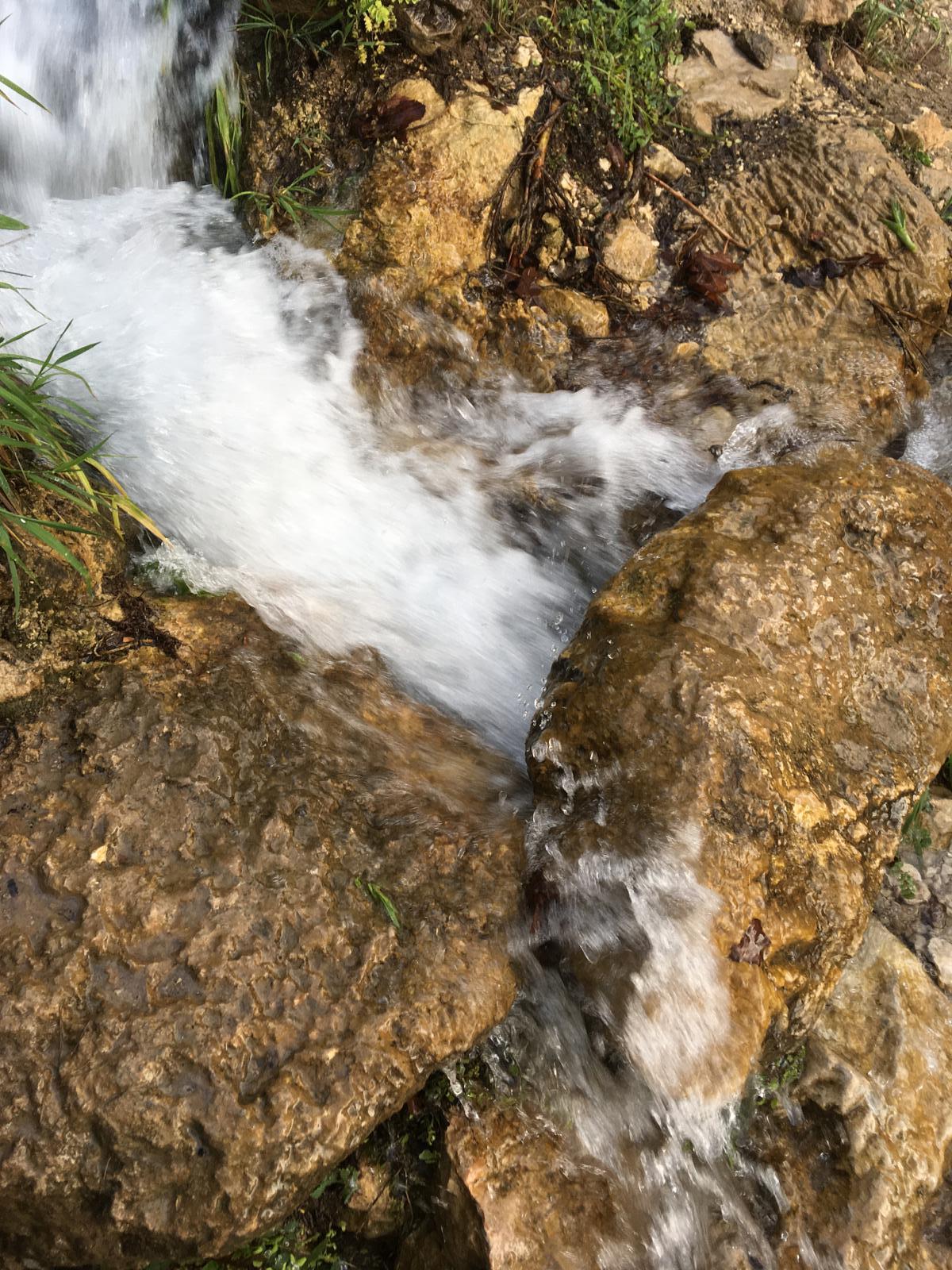 چشمه مرغک