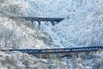 باید و نبایدهای سفر به شمال کشور در زمستان