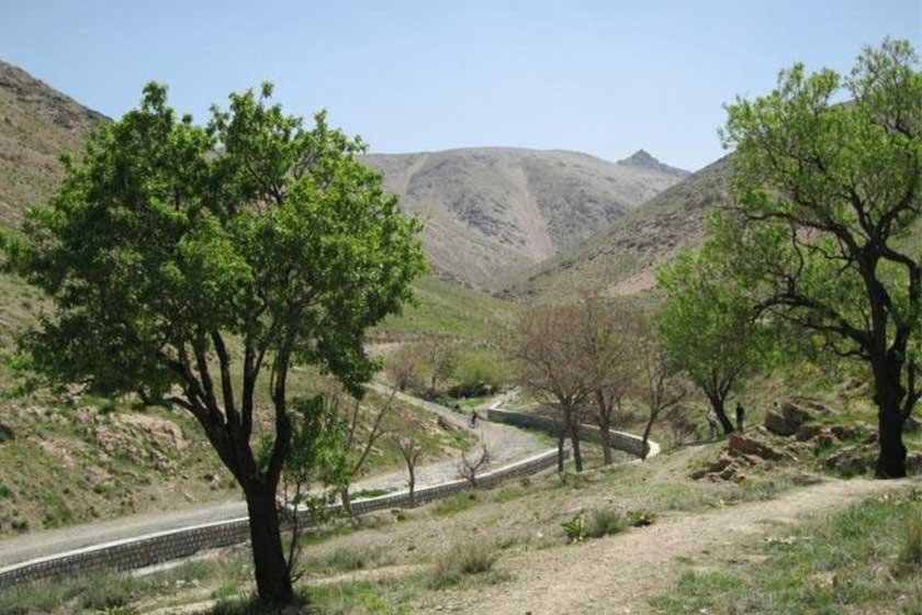 منطقه نمونه گردشگری دره گردو