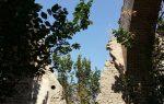 روستای اردوشاهی ارومیه
