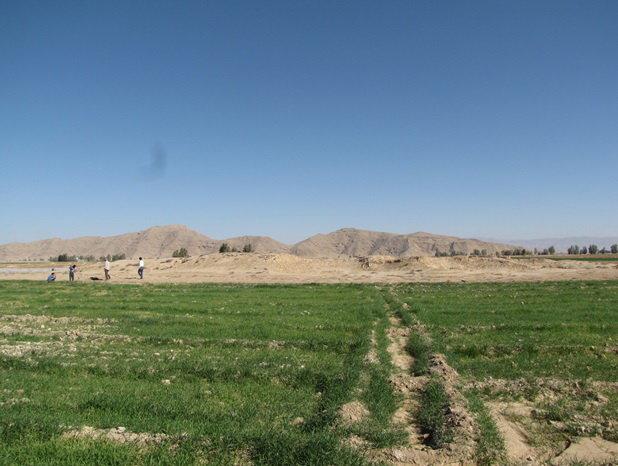 تل سفیدک حاجی آباد