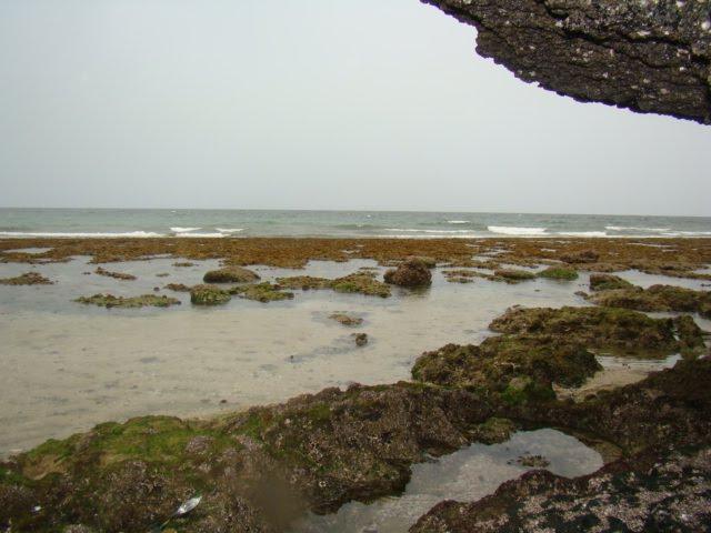 سواحل جزیره قشم
