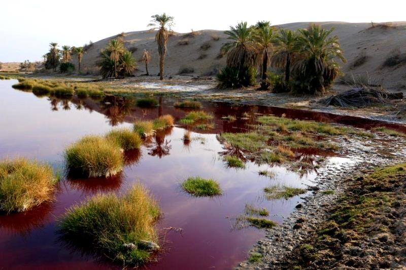 چشمه آب سرخ