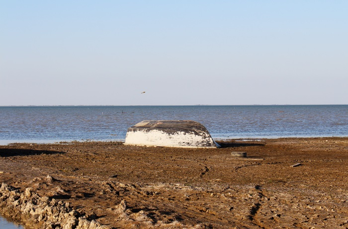 دریای آرام گلوگاه