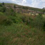 روستای یونجالو مراغه