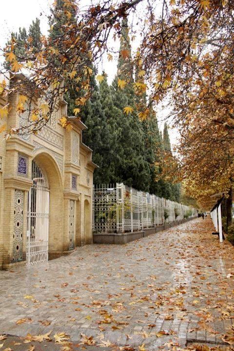 خیابان ارم شیراز