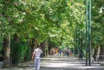 زیباترین خیابانها برای پیاده روی در ایران