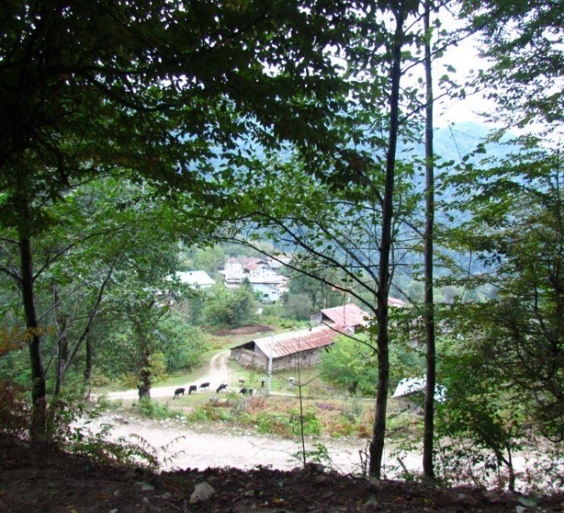 روستای دراسرا