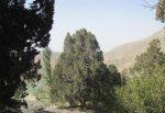 روستای سبلا