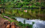 زیباترین و دیدنی ترین تالاب های ایران