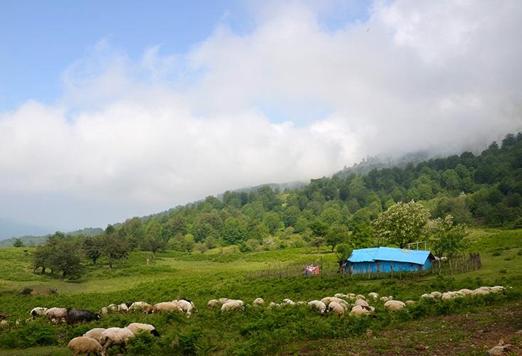 چشمه للندیز