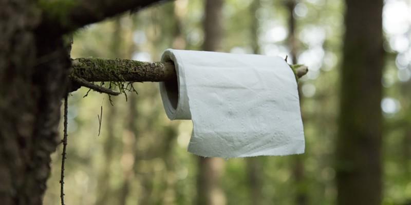 مشکل دستشویی در طبیعت گردی