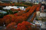 خیابان ولیعصر تهران ، بلندترین خیابان ایران و خاورمیانه