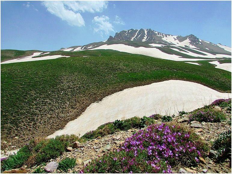کوه بوز سینه